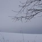 für Frostködel: wärmt von innen…